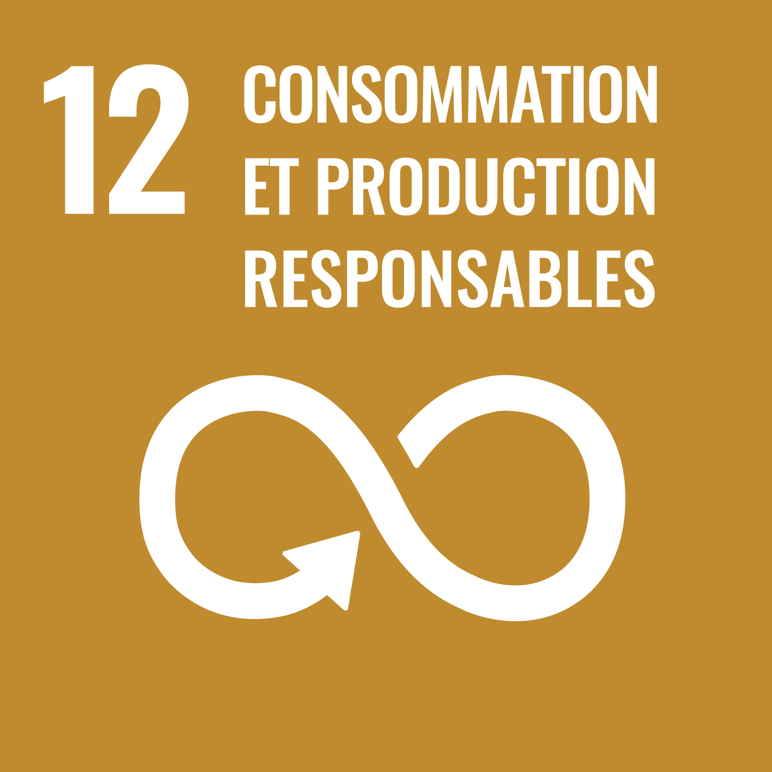12. consommation & production responsables