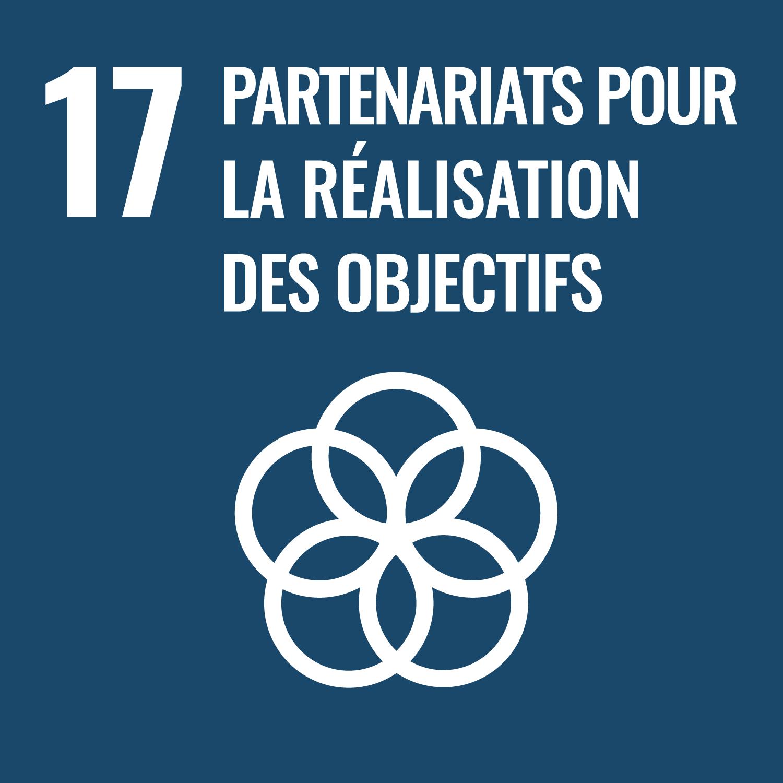 17. partenariats pour la réalisation des projets