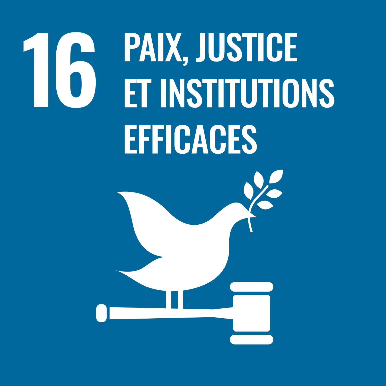 16. paix, justice et institutions efficaces
